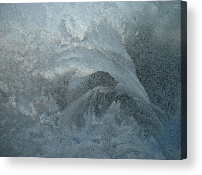 Nature Acrylic Print featuring the photograph Ice Crystals 1 by Eric Workman