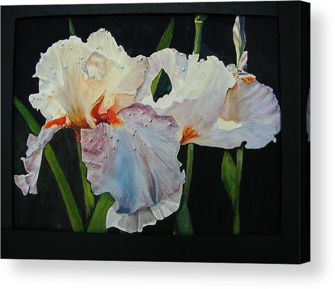 Flowers Acrylic Print featuring the painting Iris by Dwight Williams