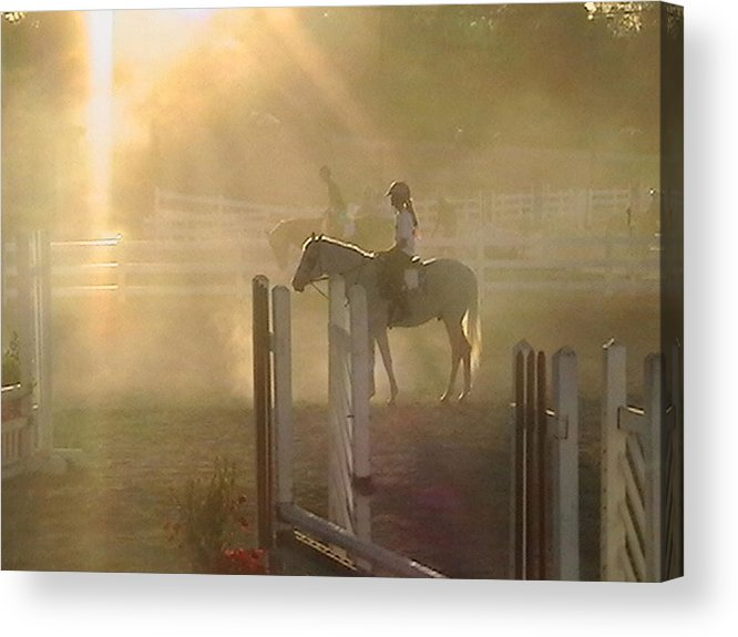 Horse Acrylic Print featuring the photograph It Is Almost Show Time by Donna Thomas
