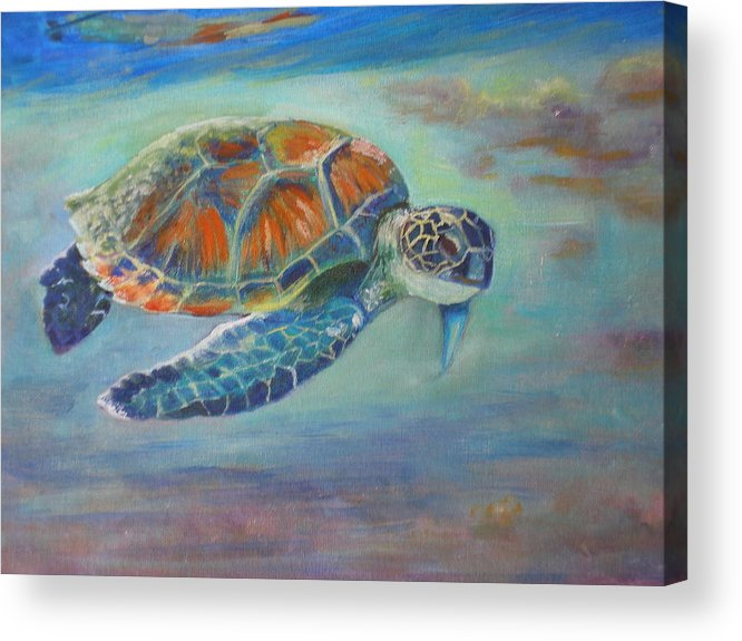 Kauai Acrylic Print featuring the painting Just Loafin Along by Elizabeth Ferris