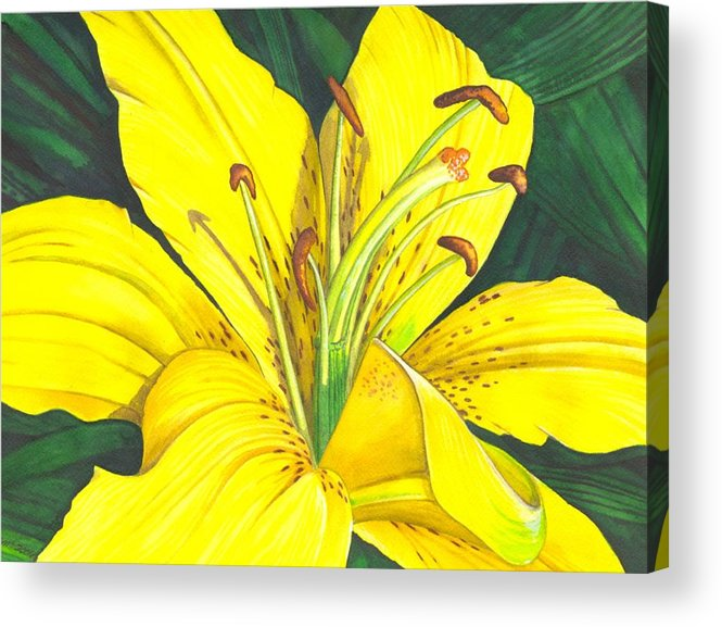 Lily Acrylic Print featuring the painting Lemon Lily by Catherine G McElroy