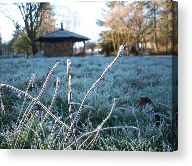 Morning Acrylic Print featuring the photograph Light Morning Frost by Ken Day