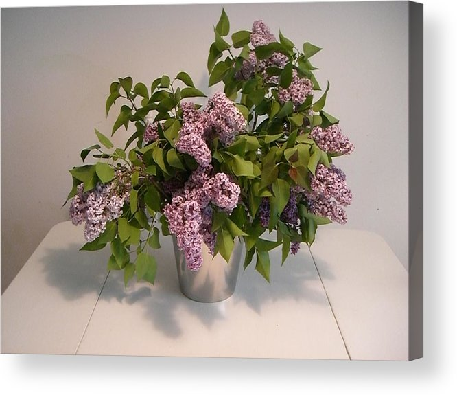 Lilacs Acrylic Print featuring the photograph Lilacs by Nancy Ferrier