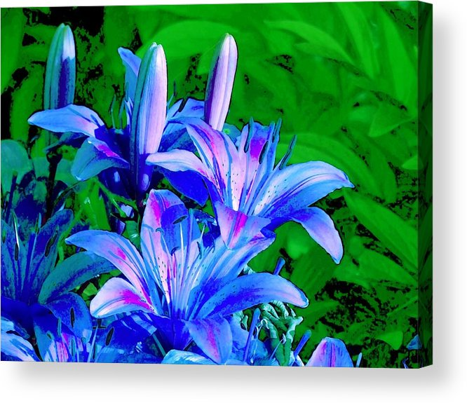 Digital Photography Acrylic Print featuring the photograph Lily In Green by Jim Darnall