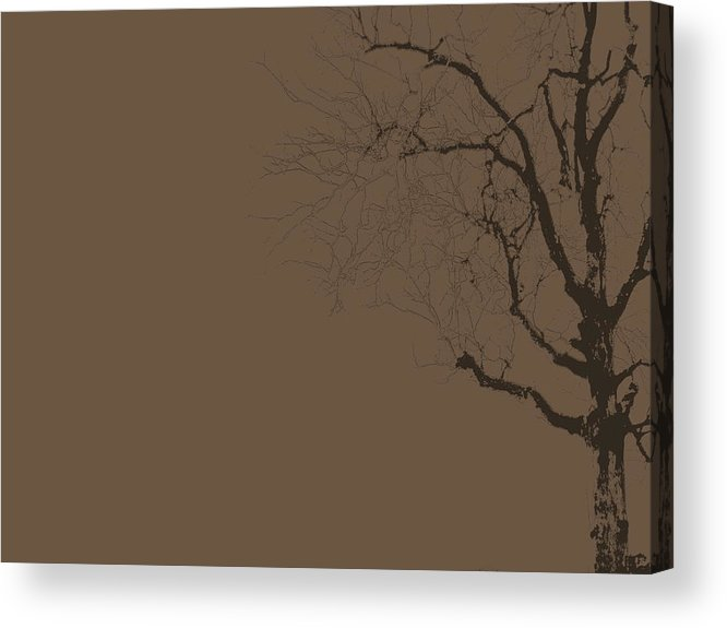 Tree Acrylic Print featuring the photograph Loneliness by Ed Smith
