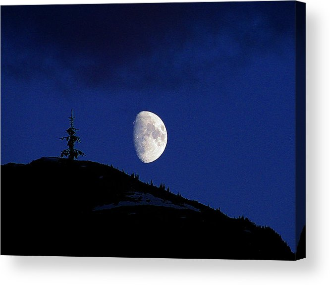 Mountain Acrylic Print featuring the photograph Lonely Companion by Blair Wainman