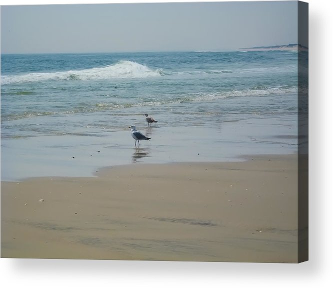 Beach Acrylic Print featuring the photograph Looking Out Into The Sea by Bill Cannon