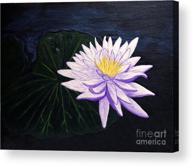 Original Painting Acrylic Print featuring the painting Lotus Blossom At Night by Patricia Griffin Brett