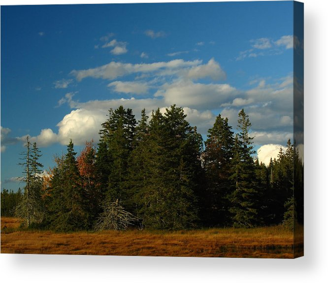 Landscape Acrylic Print featuring the photograph Maine Landscape Photography by Juergen Roth