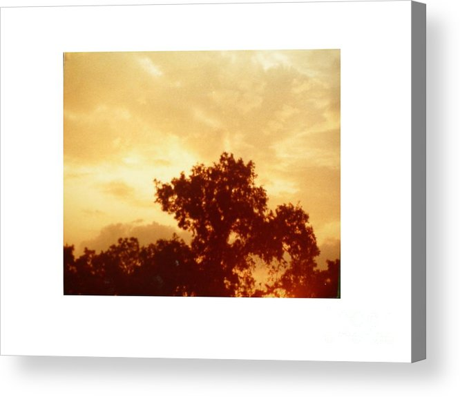Landscape Acrylic Print featuring the photograph Majestic Sky by Hal Newhouser