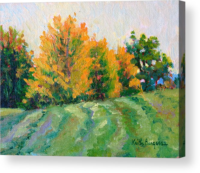 Impressionism Acrylic Print featuring the painting Maple Grove by Keith Burgess
