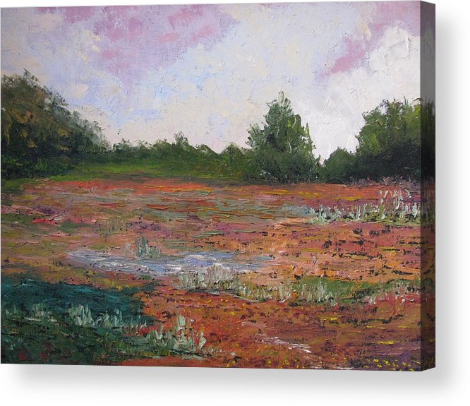 Landscape Acrylic Print featuring the painting Meadow Creek - Late Summer by Belinda Consten