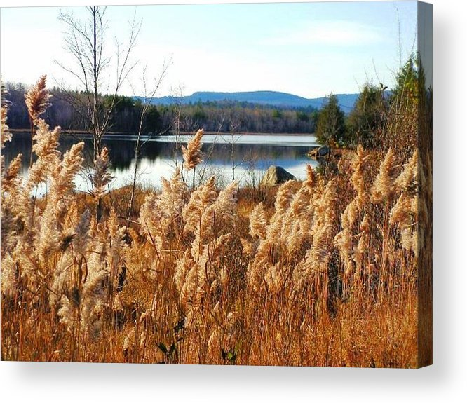 Photography Acrylic Print featuring the photograph Millinocket Lake by Katina Cote