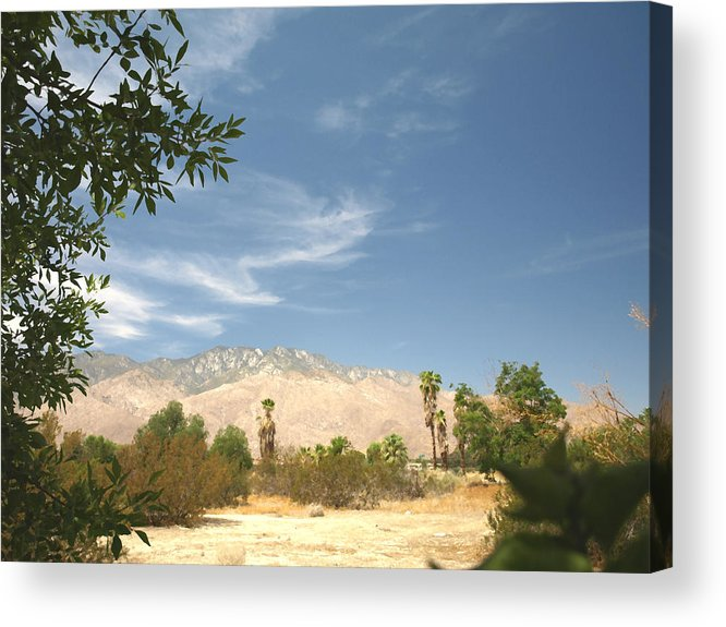 Desert Acrylic Print featuring the photograph Mojave by Chuck Shafer