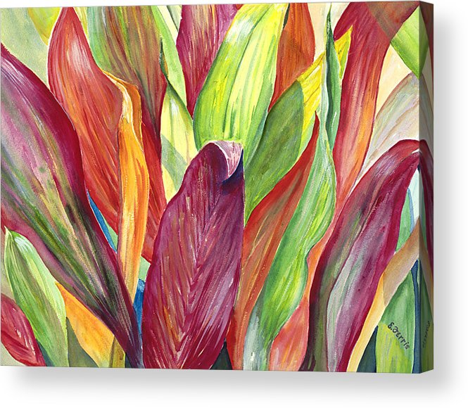 Ti Acrylic Print featuring the painting Morning Ti by Elizabeth Ferris
