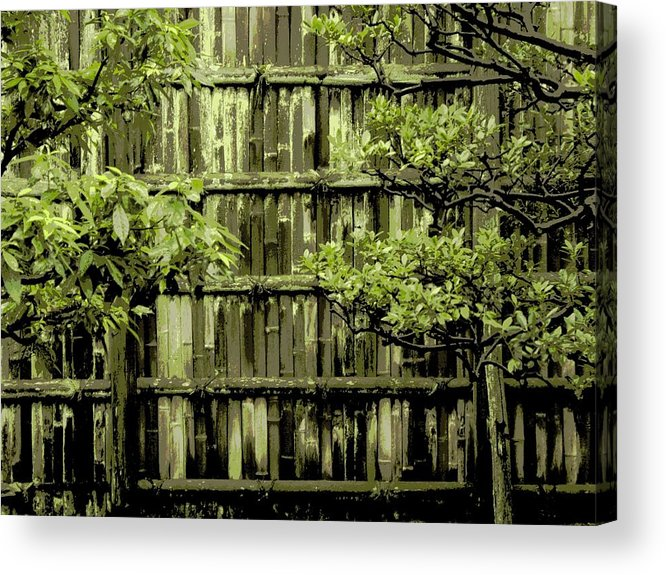 Moss Acrylic Print featuring the photograph Mossy Bamboo Fence - Digital Art by Carol Groenen
