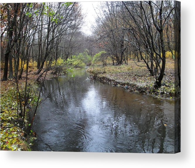 Autumn Landscape Acrylic Print featuring the photograph Nature by Leonard Holland