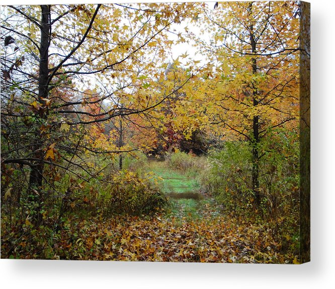 Autumn Landscape Acrylic Print featuring the photograph Nature's Expression-12 by Leonard Holland