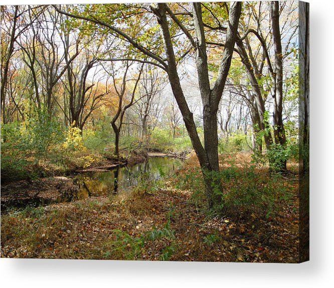 Landscape Acrylic Print featuring the photograph Nature's Expression 21 by Leonard Holland