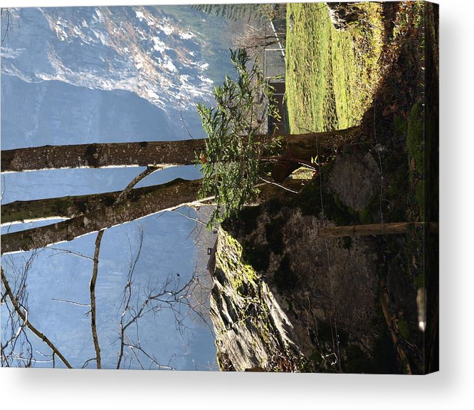 Landscape Acrylic Print featuring the photograph Neutral by Randall Slinkard