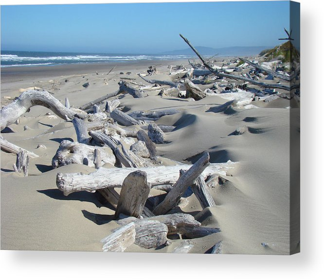 Driftwood Acrylic Print featuring the photograph Ocean Coastal Art Prints Driftwood Beach by Baslee Troutman