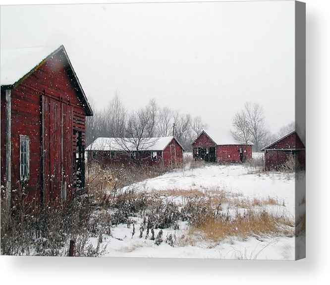 Barn Acrylic Print featuring the photograph Old Farm Sheds In Snow by Laurie With