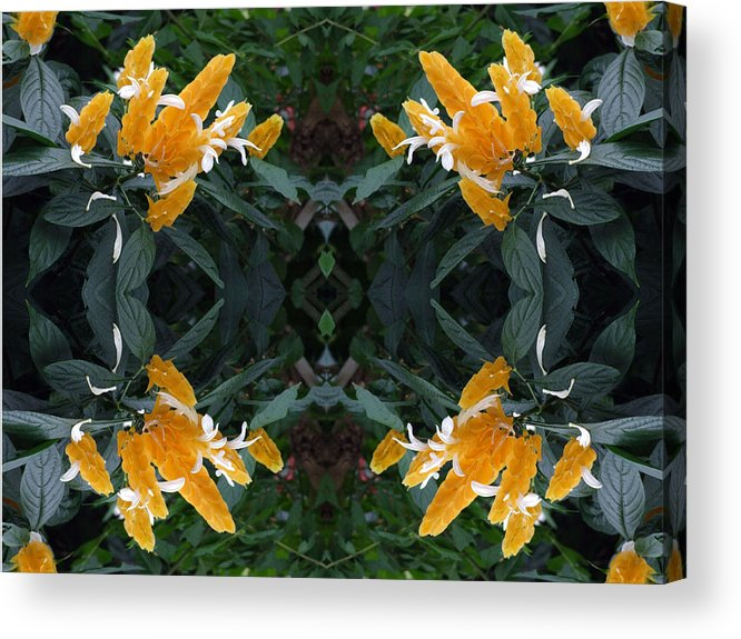 Yellow Acrylic Print featuring the photograph Orange Flowers Series 4 Of 4 by Keri Renee