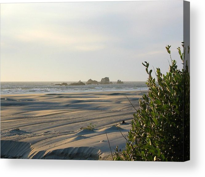 Photo Acrylic Print featuring the photograph Oregon Beach At Dusk by Mirinda Kossoff