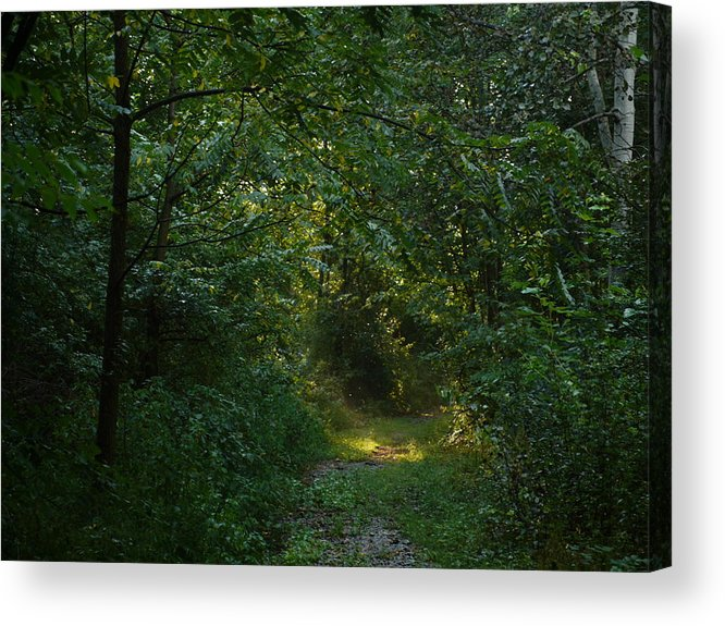 Acrylic Print featuring the photograph Pennsylvania Path by Kareem Farooq