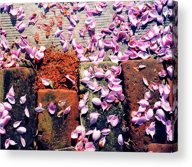 Spring Acrylic Print featuring the photograph Petals On The Bricks 2 Ae by Lyle Crump