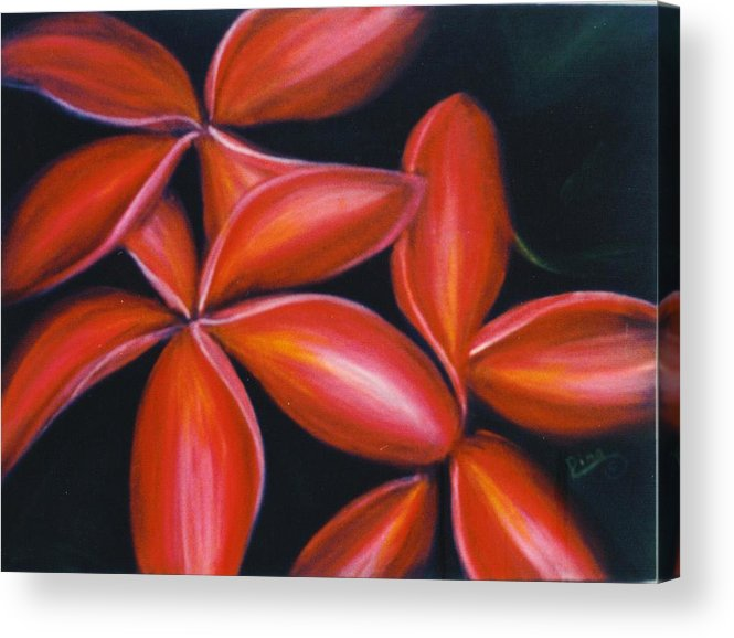 Floral Acrylic Print featuring the painting Plumeria Rouge by Dina Holland