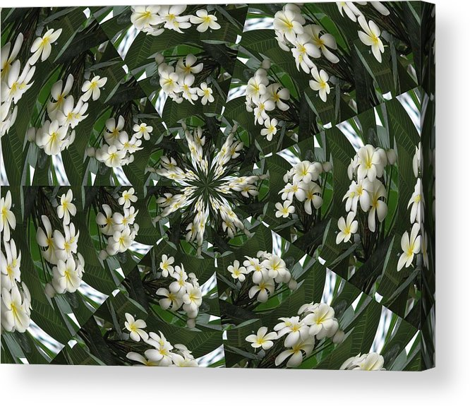 Plumeria Acrylic Print featuring the photograph Plumeria Spinning by Judy Ford