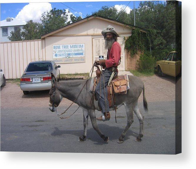 Prospector Re-enactor With Burro Passing Rose Bush Museum Sign Tombstone Arizona 2004 Acrylic Print featuring the photograph Prospector Re-enactor With Burro Passing Rose Bush Museum Sign Tombstone Arizona 2004 by David Lee Guss