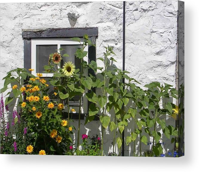 Quebec Garden Acrylic Print featuring the photograph Quebec Floral by Nancy Ferrier