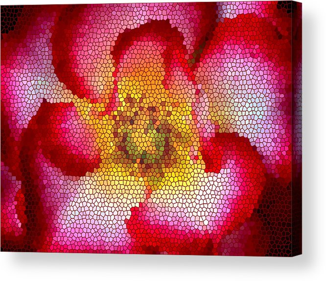 Floral Acrylic Print featuring the photograph Red And White And Glass by Leonard Rosenfield