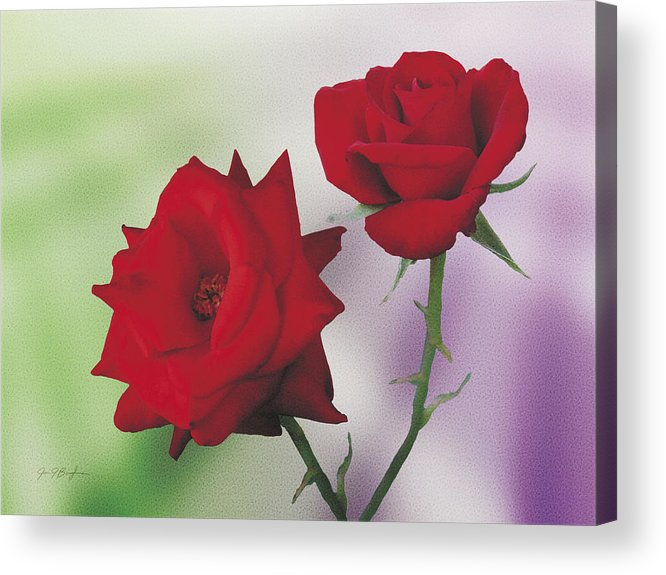 Roses Acrylic Print featuring the painting Red Mr. Lincoln Roses by Jan Baughman