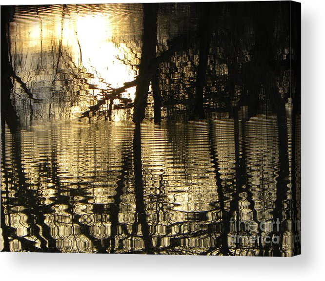 Pond Acrylic Print featuring the photograph Reflections In The Pond by Belinda Sellari