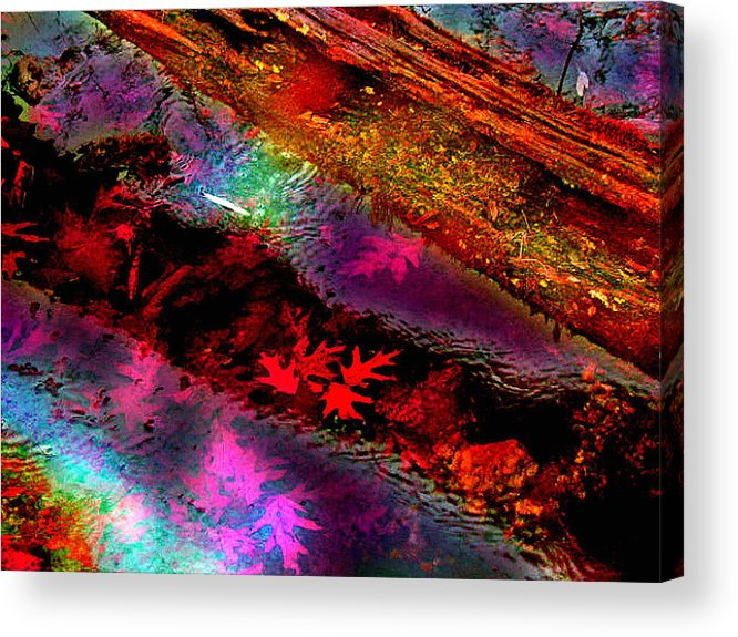 Fall Acrylic Print featuring the photograph Reflections Of Fall by Julie Grace