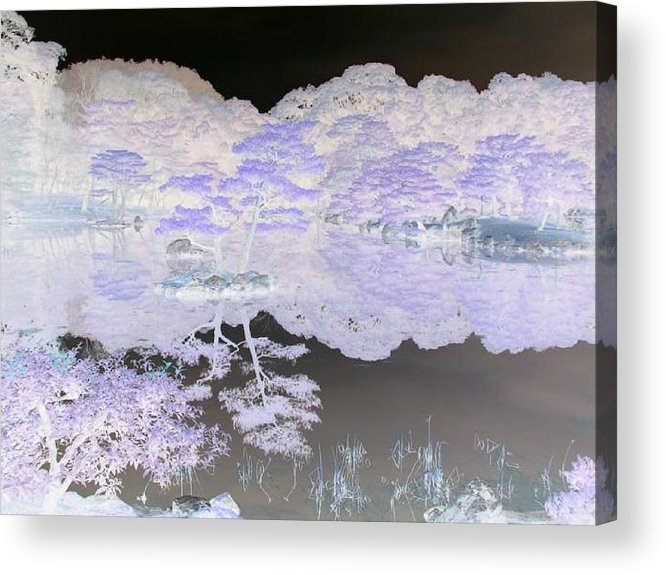 Reflection Acrylic Print featuring the photograph Reflections On A Surreal Pond by Curtis Schauer