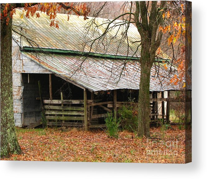 Rural Acrylic Print featuring the photograph Rural by Amanda Barcon