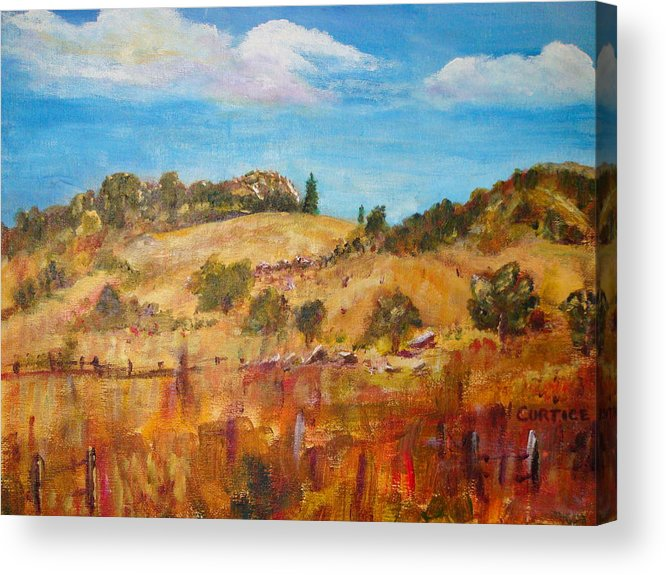 Landscape Acrylic Print featuring the painting San Diego Backcountry by Carolyn Curtice