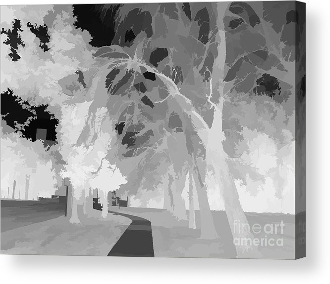 Art Acrylic Print featuring the photograph Series Of Black And White 47 by Funmi Adeshina