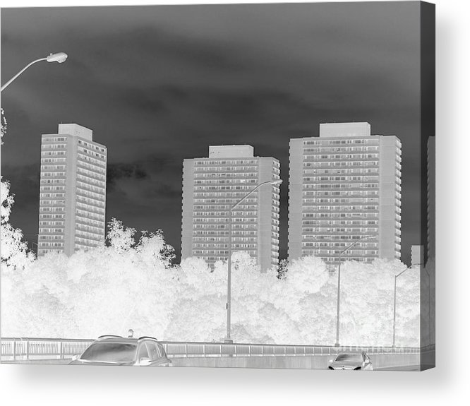 Art Acrylic Print featuring the photograph Series Of Black And White 49 by Funmi Adeshina
