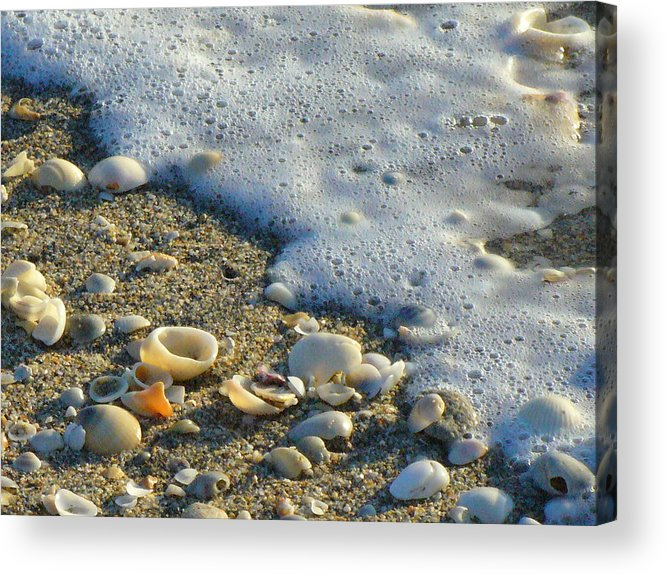 Shells Acrylic Print featuring the photograph Shells And Seafoam by Peggy King