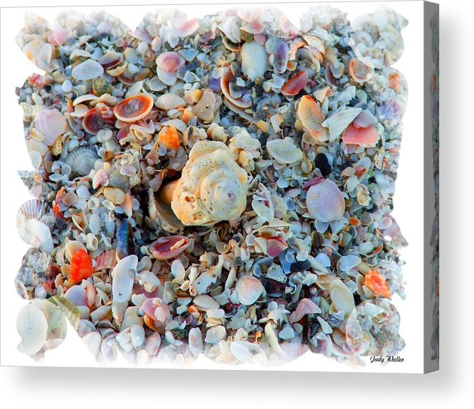 Shells Acrylic Print featuring the digital art Shells by Judy Waller