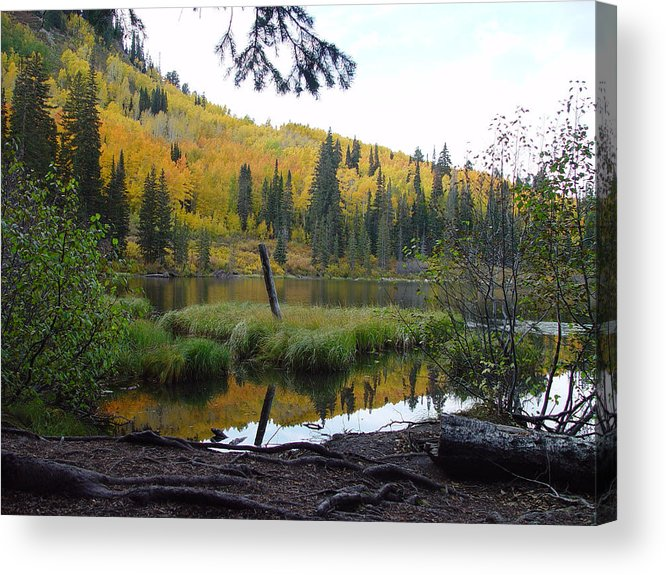 Fall Acrylic Print featuring the photograph Silver Lake 3 October 2008 by Derek Nielsen
