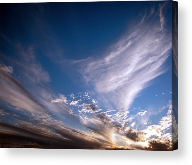 Skies Acrylic Print featuring the photograph Sky by Amanda Barcon