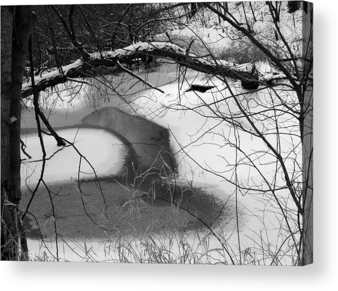 Indiana Landscape Acrylic Print featuring the photograph Snow Detail by Michael L Kimble