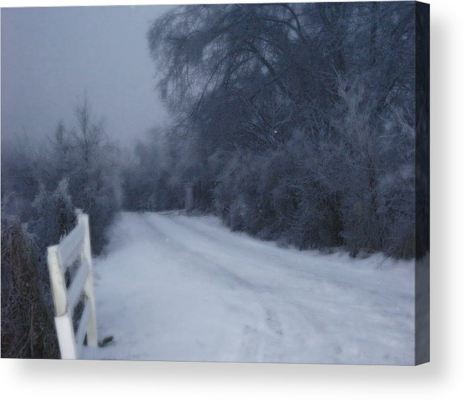 Landscape Acrylic Print featuring the photograph Snowy Evening by Martie DAndrea