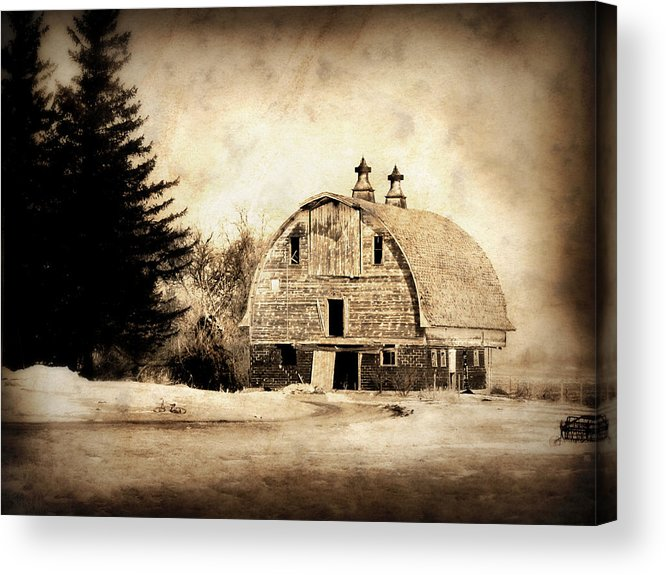 Barn Acrylic Print featuring the photograph Somethings Missing by Julie Hamilton